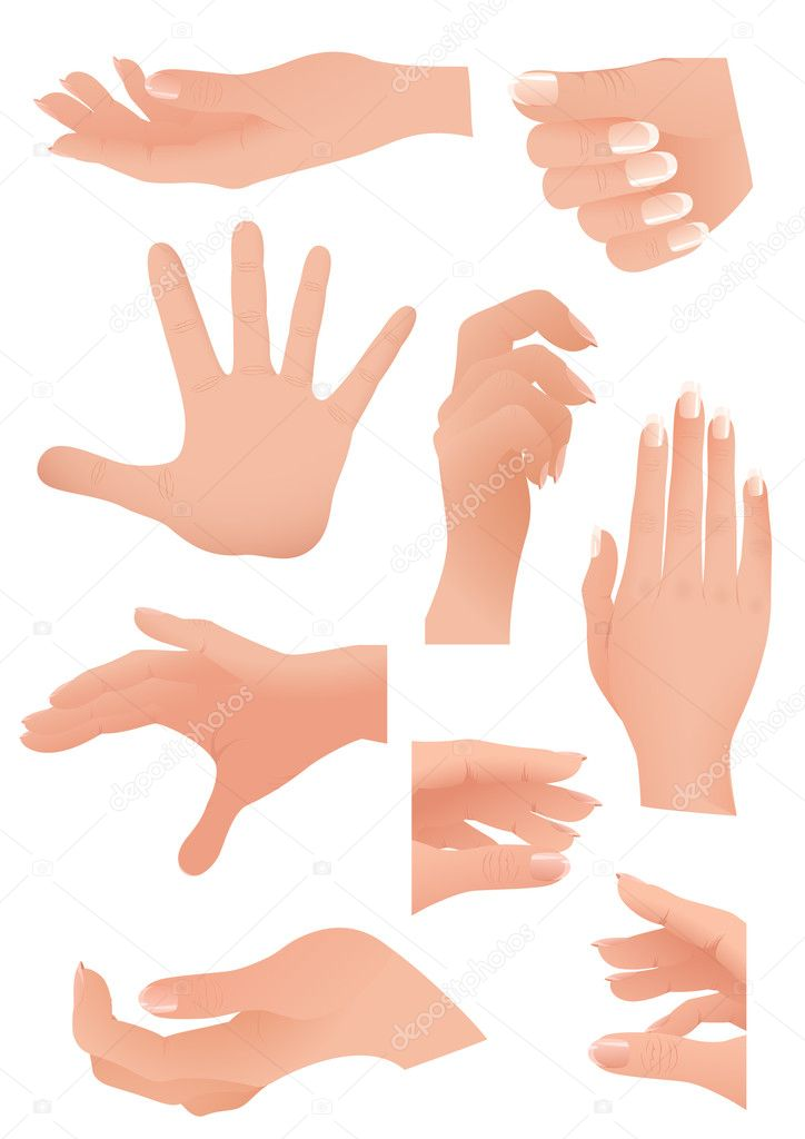 Human palm set,  vector illustration — Stock Vector #2421390