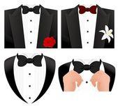 Conjunto de gravata borboleta — Vetor de Stock