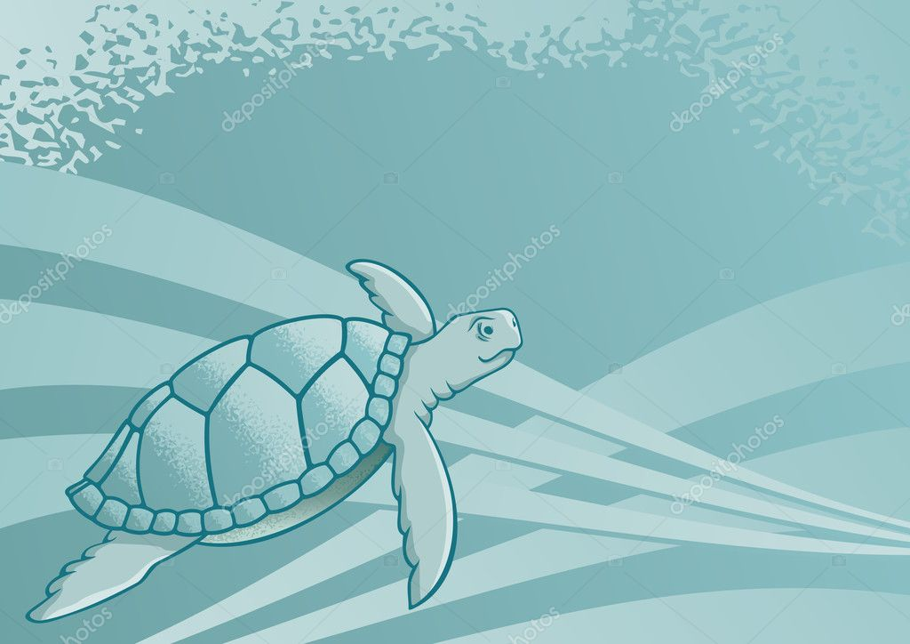 Sea turtle background for page layout or presentations — Stock Vector #1892871