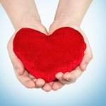 Heart in hands — Stock Photo
