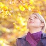 Autumn forest — Stock Photo #1620309
