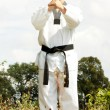 Taekwondo fighter outdoor — Stock Photo
