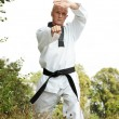 Taekwondo fighter outdoor - Foto de Stock