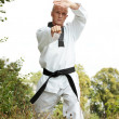 Taekwondo fighter outdoor — Stock Photo #1748599