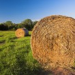 Hay bale — Stock Photo #2522521