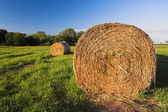 Hay bale — Stock Photo
