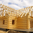 Ecological wooden house — Stock Photo #1600242