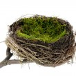 Easter nest - Foto Stock