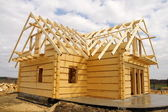 Ecological wooden house — Stockfoto
