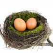 Easter nest — Stockfoto