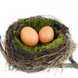 Easter nest — Stock Photo #1649269