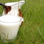 Wellness, land of milk — Stock Photo #1649937