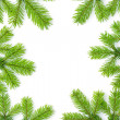 Christmas background with spruce tree - Stock Photo