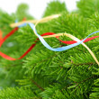 Christmas background with spruce tree — 图库照片 #1713431