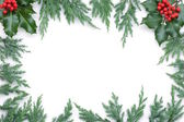 Christmas Frame with spruce tree — Stock Photo