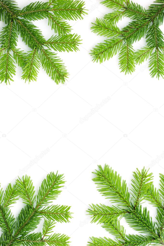 Christmas background with spruce tree frame isolated on white — Photo #1713224