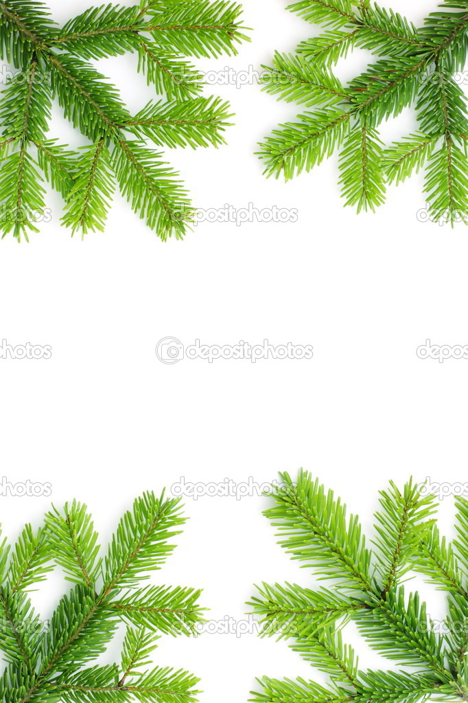 Christmas background with spruce tree frame isolated on white — Zdjęcie stockowe #1713224
