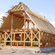 Ecological wooden house — Stock Photo