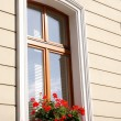 Window with flowers — Stock Photo #1728961