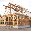 Постер, плакат: Ecological wooden house