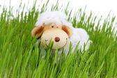 Easter sheep — Stock Photo