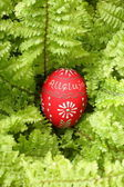 Easter egg on green — Stock Photo