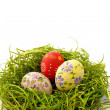 Easter egg on green grass background — Stock Photo