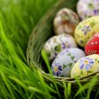 Stockfoto: Easter egg in wicker basket