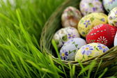 Easter egg in wicker basket — Stok fotoğraf