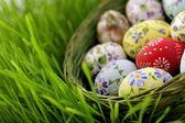 Easter egg in wicker basket — Стоковое фото