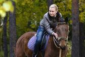 конный спорт — Стоковое фото