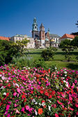 Wawel Castle in Krakow, Poland — Foto Stock