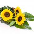 Sunflowers table decoration - Stock Photo