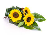 Sunflowers table decoration — Stock Photo