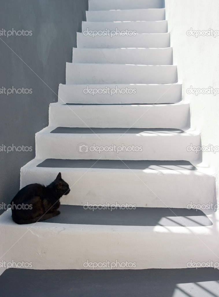 Black cat sitting on the stairs   #1703865