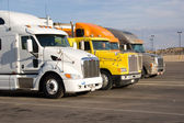 Rigs in a row — Stock Photo