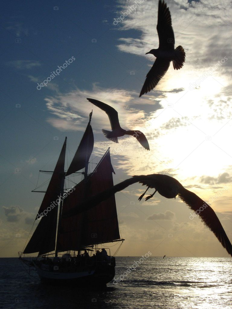 Sailboat with three seagulls passing by at a sunset moment — Stock Photo #1603991