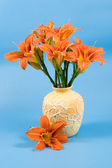 Bouquet of day-lily flowers — Stock Photo