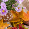 Autumn still life — Stock Photo #1636502