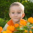 Young boy and orange flowers — Stock Photo