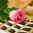 Stock Photo: Pink rose and chocolate box