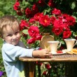 Stock Photo: Summer tea in a garden