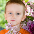 Stock Photo: Boy with a bouquet of lilacs in the country