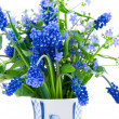 Bouquet of spring flowers — Stock Photo #2296685