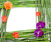 Green frame — Stock Photo