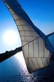 White sail against the sunset sky — Stock Photo