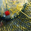 Fishing net macro — Stock Photo #1620891