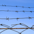 Barbed wire on blue sky — Stock Photo