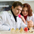 Couple of young scientists — Stockfoto