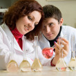 Young scientists  in laboratory — Stok fotoğraf